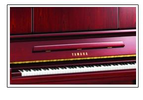 如何选择好的钢琴及雅马哈钢琴特点|雅马哈小百科-许昌雅马哈钢琴专卖店