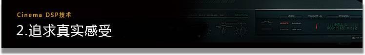 CINEMA DSP TECHNOLOGY 2. 究極のリアリティを求めて