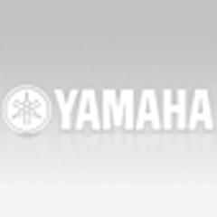 2017TB通博国际琴声琴语迎新春大型网络视频选拔赛 暨2017TB通博国际音乐之旅补票啦